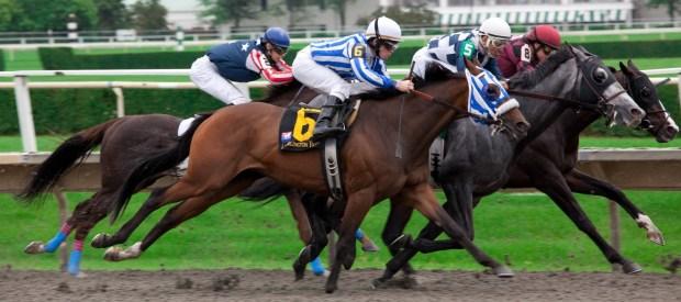 Horses Racing