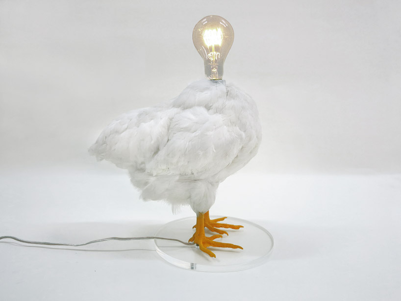 Ikea Forks Sebastian Errazuriz Turns Taxidermy Bird Into Chicken Lamp