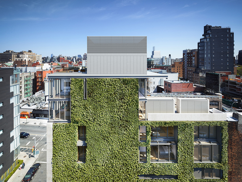Green Walls In New York A Roundup Of Vertical Gardens - Green Walls In New York