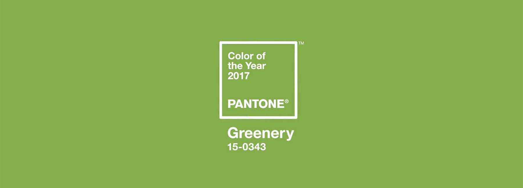 Pantone Color 2016 The Pantone Color Of The Year 2017 Greenery