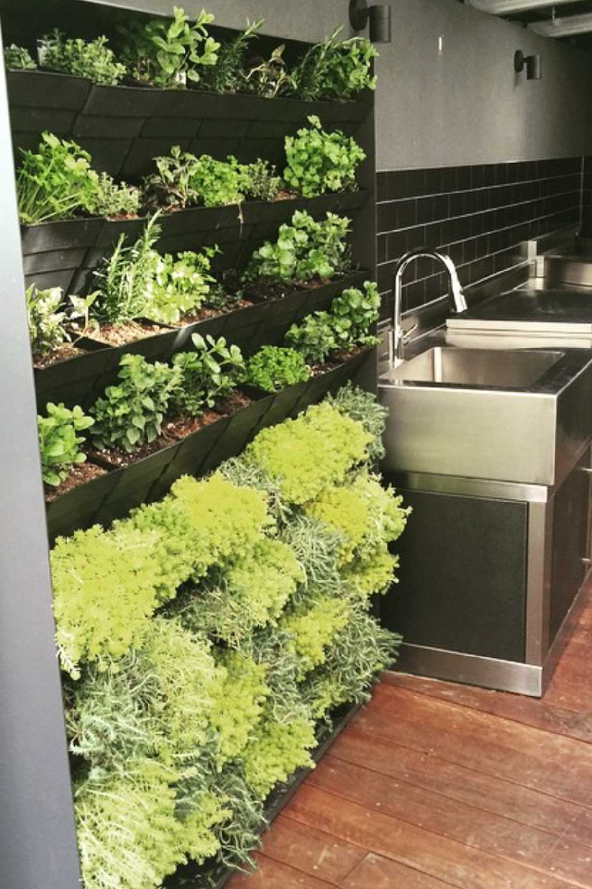 Herb Wall Herb Garden Ideas Nine Ways To Create A Happy Herb Garden