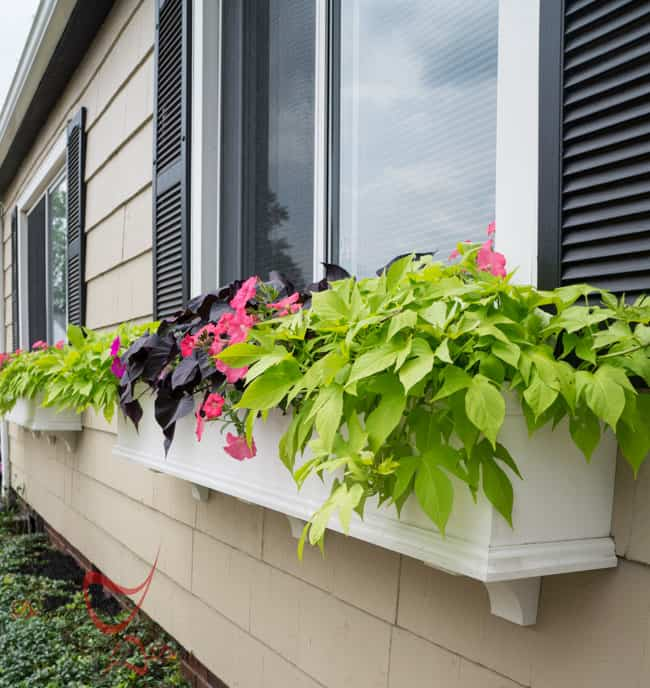 Window Boxes- Flower Boxes- How to add curb appeal-7