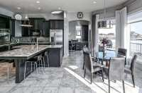 Beautiful Black Kitchen Cabinets (Design Ideas ...