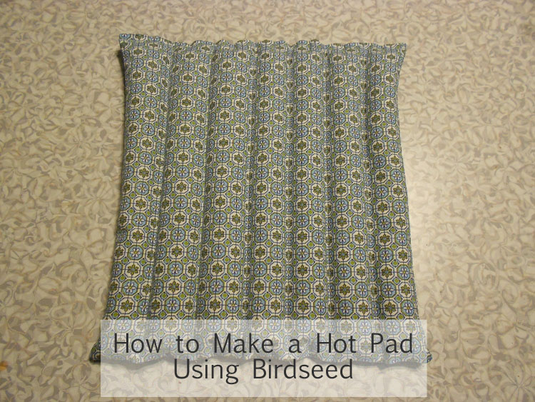 Make a Hot Pad Using Birdseed DSCN0478 copy