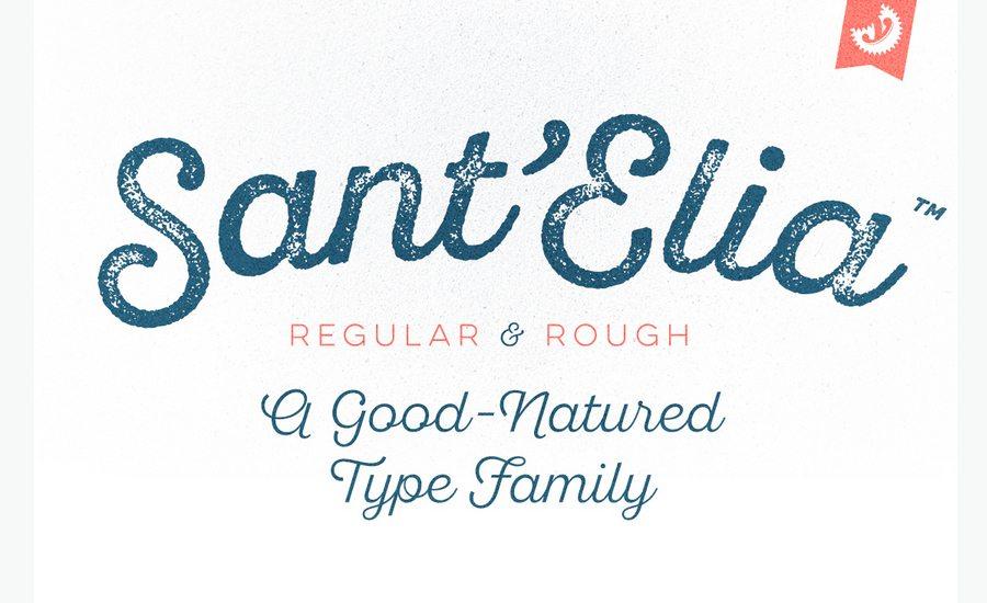 100+ Beautiful Script, Brush  Calligraphy Fonts Premium Blog