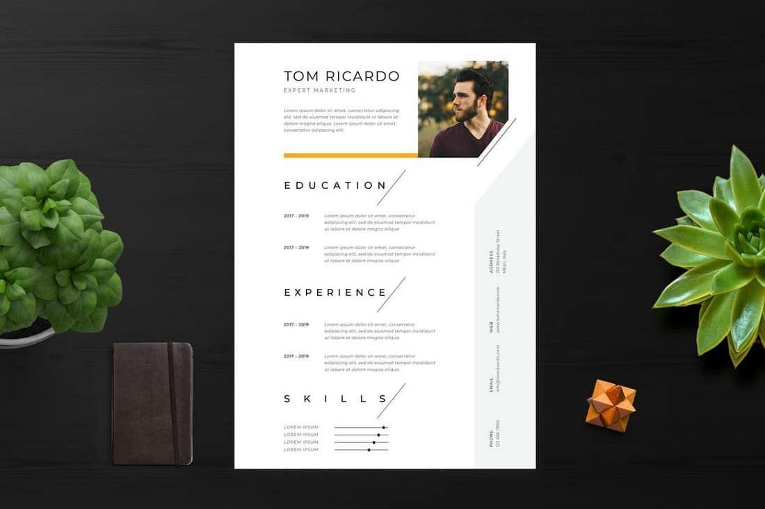 free minimalist resume template torrent