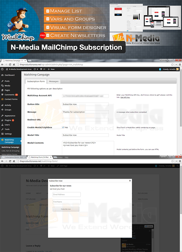 03 N-Media MailChimp Subscription