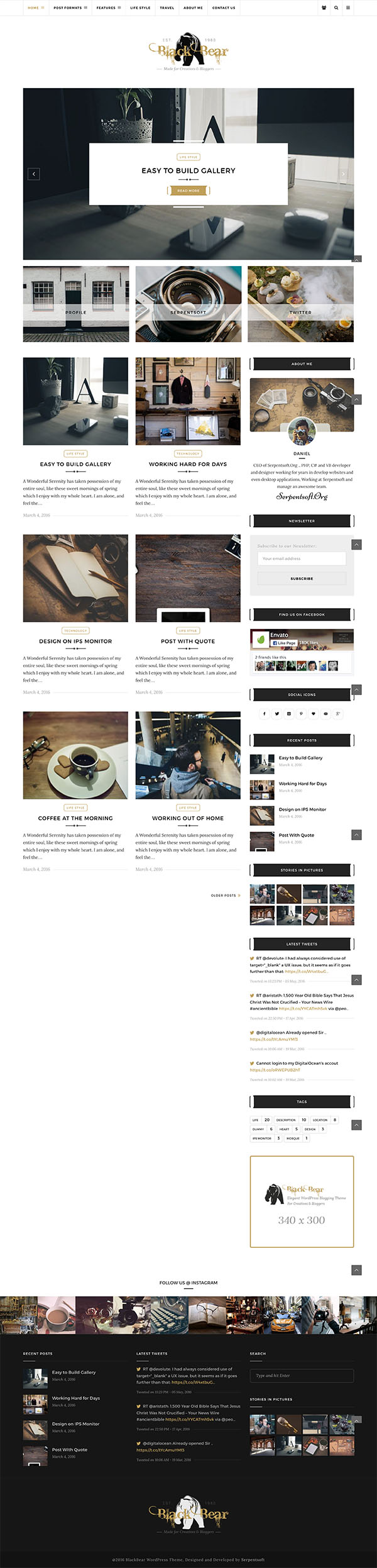14 Black Bear - Responsive WordPress Blog Theme