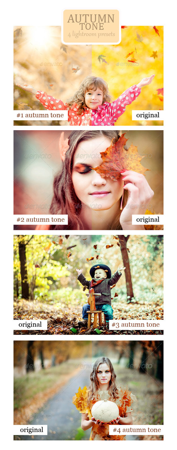 16 Autumn Tone - 4 Lightroom Presets