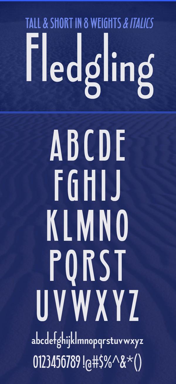 08 Fledgling Free Font