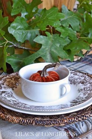 velvet-pumpkin-in-bowl-fall-table-setting_300