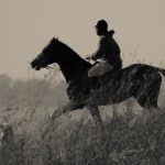 No Country for Wild Horses- Only Wild Men
