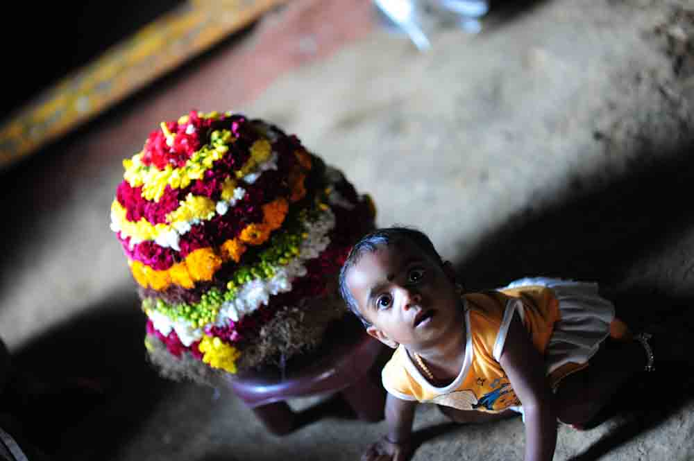 Toddler with Bathukamma Flowers Telangana