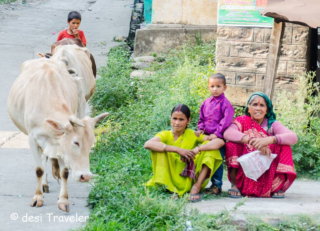 Holy cow and Indian women in village