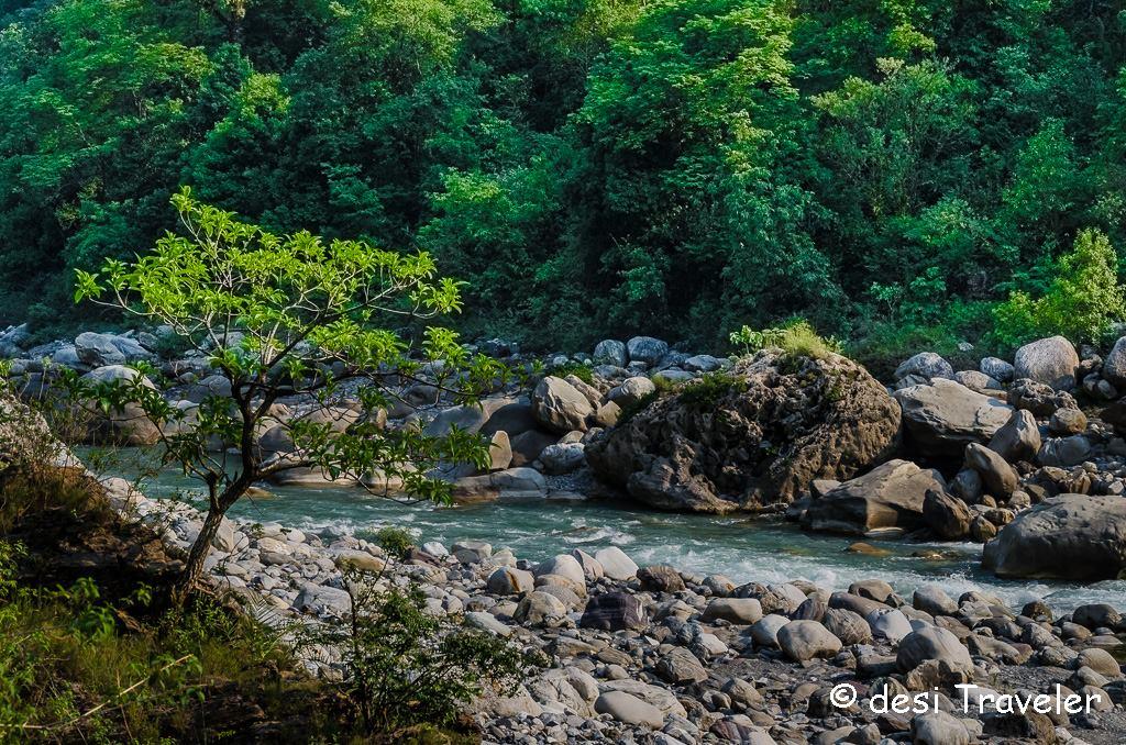 Ramganga river bank picnic spot