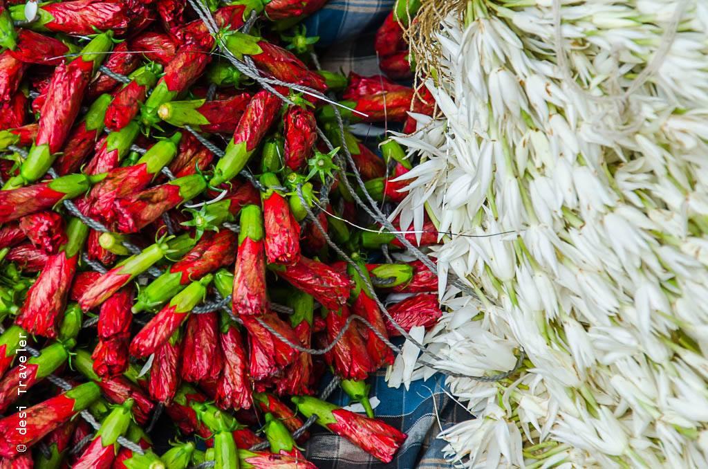 Hibiscus buds for sale Bansphatak Flower market