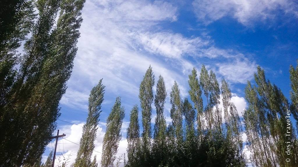 Blue Skies of Leh