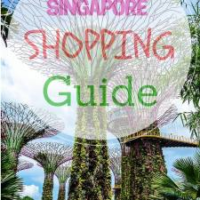 A Traveler's Guide to Shopping In Singapore