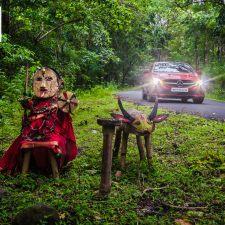 February 2017 Desktop Calendar - Jungle Goddess Of Chikmagalur Forest