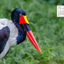 April 2017 Calendar – Download Desktop Wallpaper Jurong Bird Park Singapore