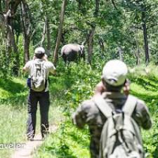 Anti Poaching Camp - Patrolling Bandipur National Park