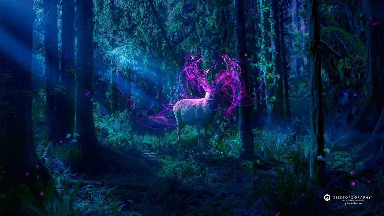 Beautiful Anime Girl Fantasy Forest Wallpaper Magical Forest Desktopography