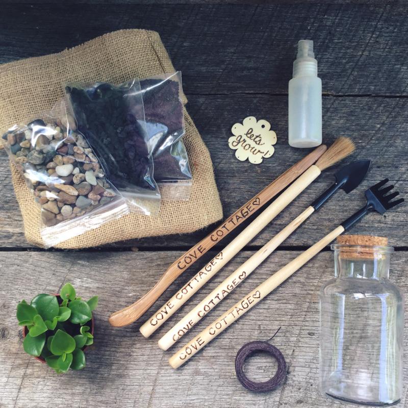 Succulent Garden Gift Ideas