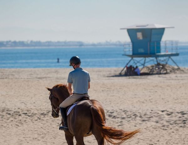 LONG BEACH HOSTS THE LONGINES MASTERS OF LOS ANGELES.