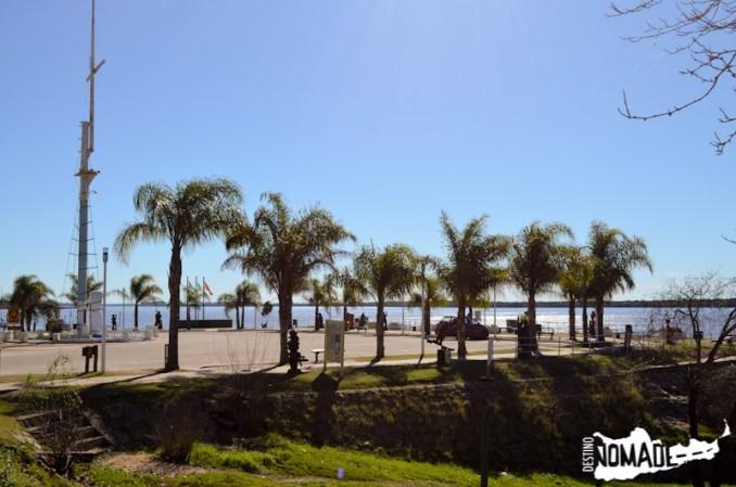Puerto de Colón, rodeado de palmares