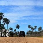 PN El Palmar, Entre Ríos