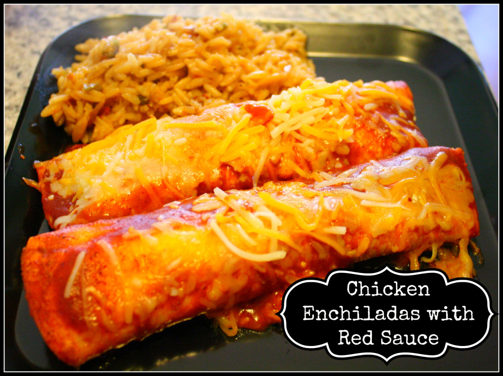 Chicken Enchiladas with Red Sauce - Detours in Life