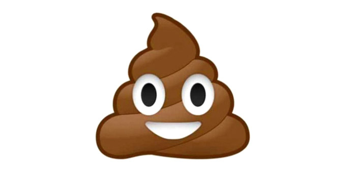 Profile of the Perfect Poop