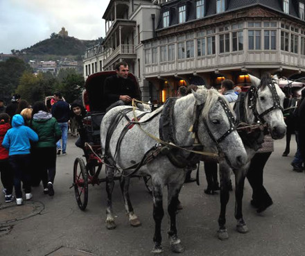 carriage_