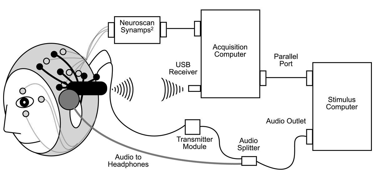 eeg machine diagram figure 2 block diagram of