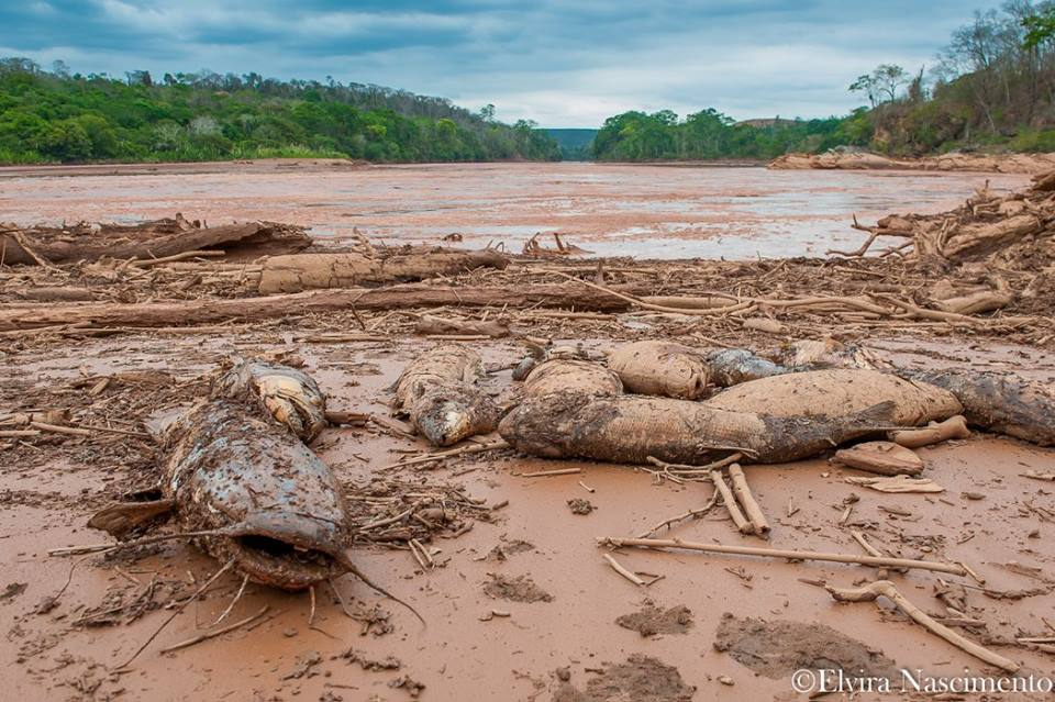Dam breach of open pit iron ore mine catastrophic for Brazil