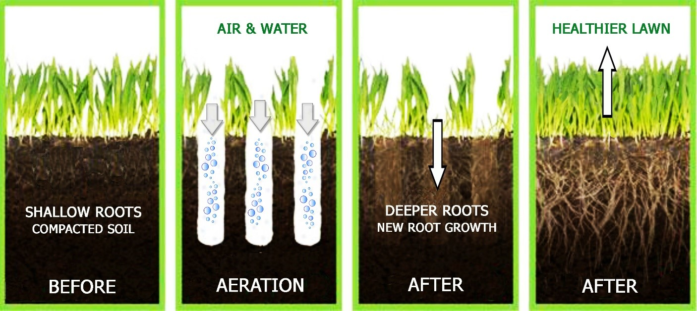 Grass Aerator The Best Lawn Aerators Manual And Machine In 2018