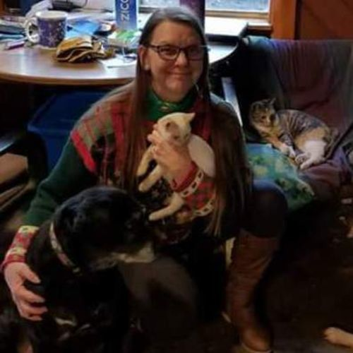 Qualified Animal Caregiver for Hire - Dog Walker, Pet Sitter in Boca