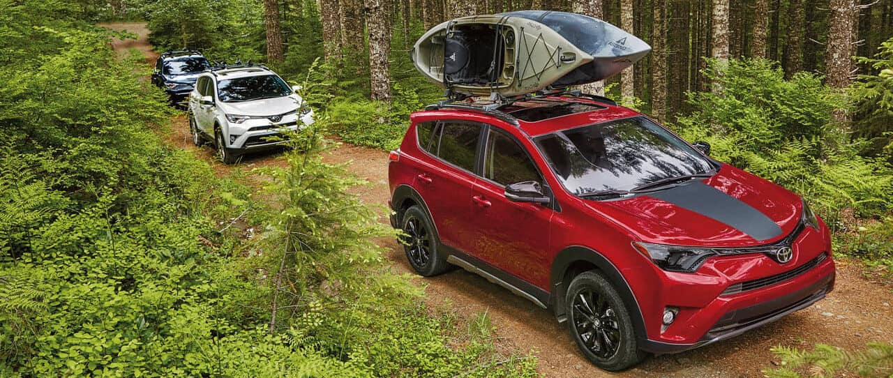 Which Toyota RAV4 Models Have AWD? Find out at Savannah Toyota