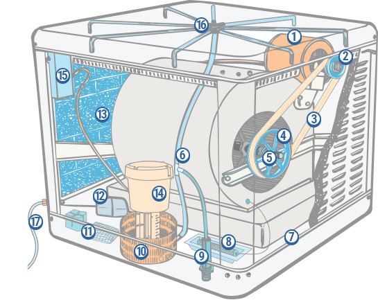evaporative cooler motor wiring diagram