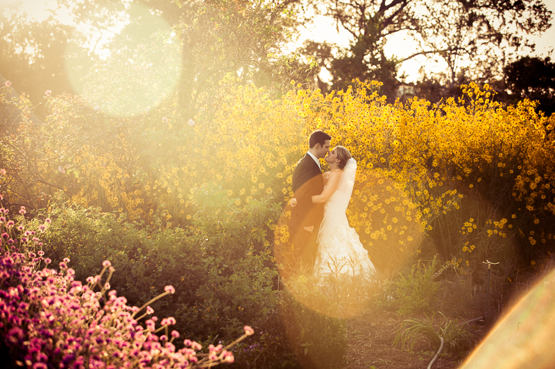 Boone Hall Plantation Wedding Photography