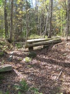 Fall 2012 062