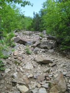 The rock slide isn't as daunting as it sounds, plus the actual slide is only about .2 miles.