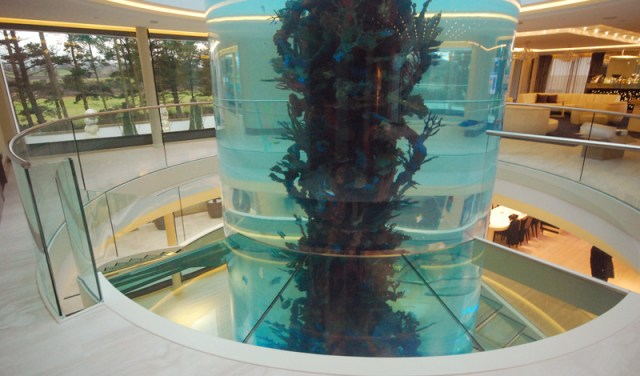GE Fish tank floating glass stairs 12