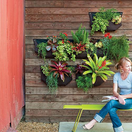 C mo hacer un jard n vertical t cnicas e ideas diario - Ideas para jardineria ...