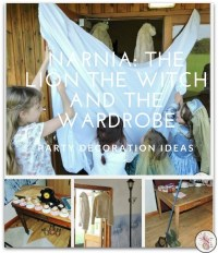 Narnia Party Decoration Ideas - Diary of a First Child