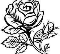 Flores En Dibujos Para Colorear Dibujos De Flores Para Colorear
