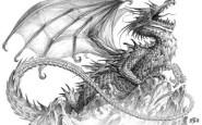 dibujos a lapiz de dragones (7)