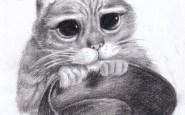 Dibujo a lapis del gato de Shrek