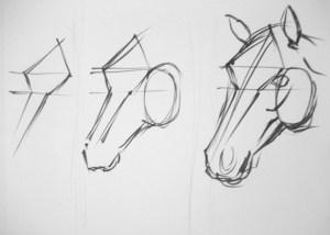 como dibujar a lapiz un caballo (12)