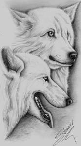 dibujos a lapiz de animales (1)